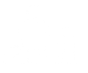MOSAIC_Icons_Research and analytics_white